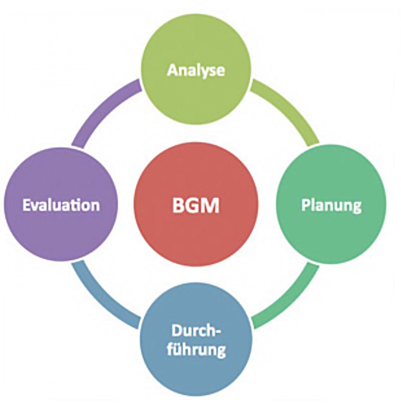 prozessberatung_bgm Prozessberatung bei der Einführung eines BGM